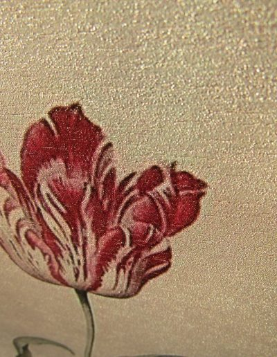 Tulip by Judith Leyster (1643)