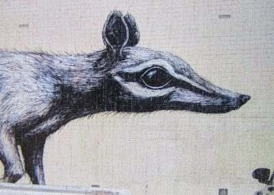 Fremantle Numbat, by ROA